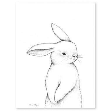 Affiche petit lapin