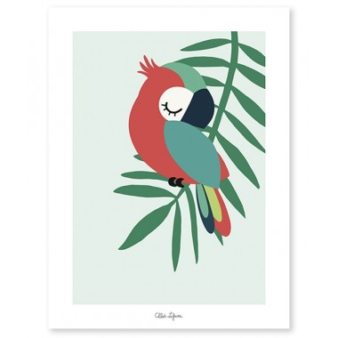Affiche perroquet vert